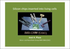Pdf silicon chip