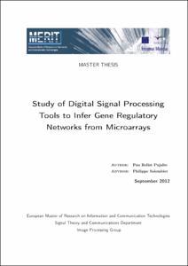 Master thesis digital signal processing