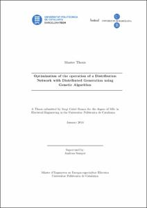 Master Thesis Optimization of the operation of a Distribution