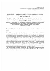 Hybrid cell centred/vertex model for large tissue deformations